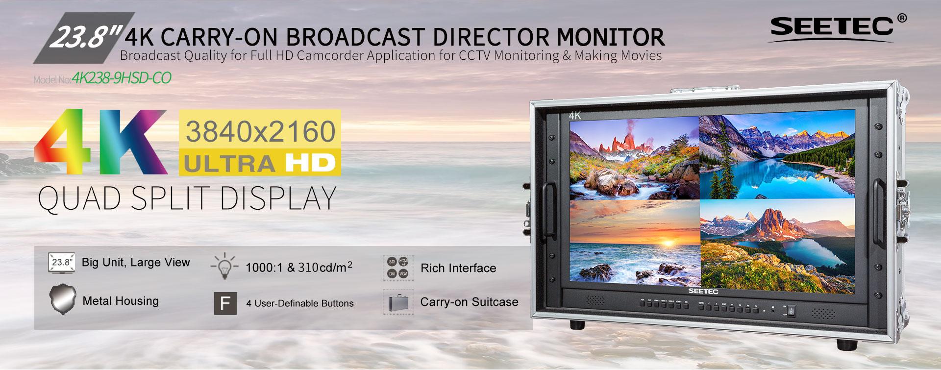 Monitor 4K 23.8 inch 4K238-9HSD-CO SEETEC